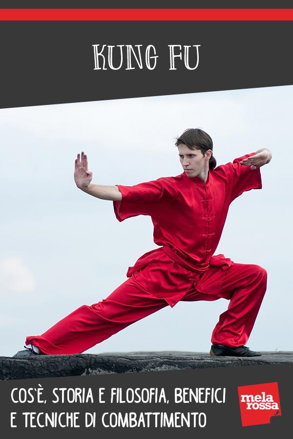 Kung fu: que es, historia y filosofía, beneficios y técnicas de lucha