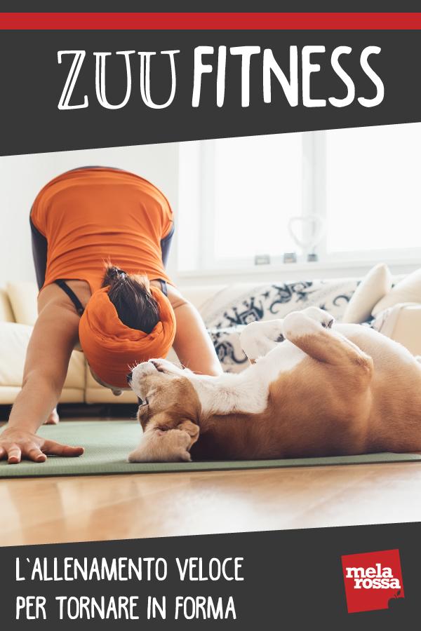 zuu fitness: entrenamiento rápido para ponerse en forma